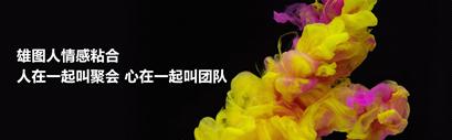 雄图伟业怎么样-四川知名的计算机技术开发机构