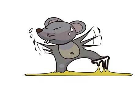 禅城杀虫灭鼠服务-杀虫灭鼠服务-选坚文白蚁防治就对了