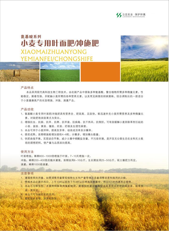 高纯度叶面肥-氨基酸小麦专用叶面肥供应商优选禾盛生物