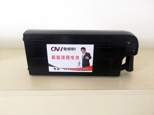 锂电池批发供货厂家-山东新国标锂电池价格