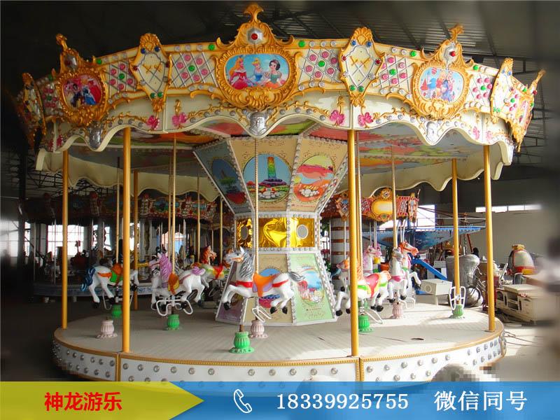 16人豪华转马设备品牌加盟  神龙游乐豪华转马设备零售价格