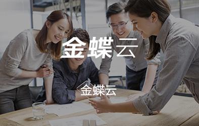 金蝶云软件-金蝶标准版-广州金蝶软件报价