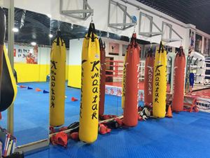 黄岛散打培训学校,专业散打培训找格斗熊武术运动