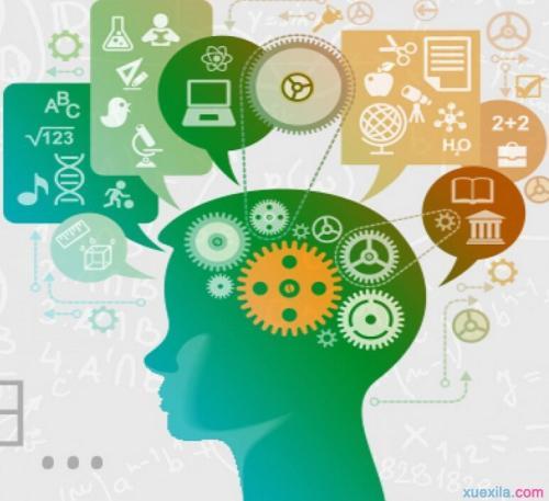 右腦開發找哪家-安徽信譽好的青少年右腦開發潛能訓練傾力推薦
