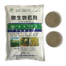 单一菌剂供应-物超所值的凝结芽孢杆菌河南沃宝供应