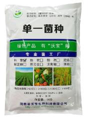 單一菌劑市場行情-河南沃寶出售優良枯草芽孢桿菌單一菌種