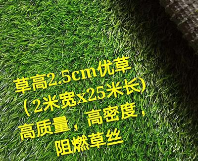 天津足球场人造草坪-邯郸哪里有供应性价比高的人造草坪