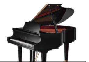 质量好的乐器出售_乐器购买价格