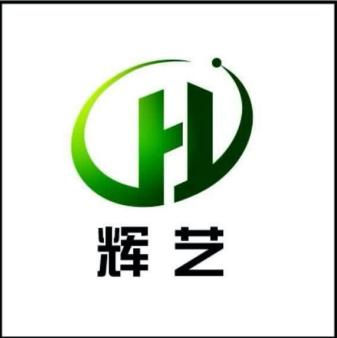 福建輝藝新材料科技有限公司