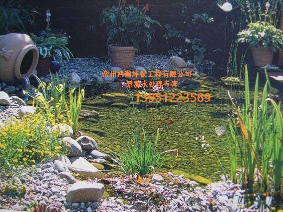 南京市戶外魚池水處理專專家-----解決水渾濁問題。