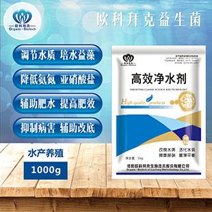水質凈化劑報價哪里能買到優惠的高效凈水劑魚塘海水專用凈水劑