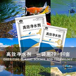 精选水质净化剂-欧科拜克生物有口碑的高效净水剂供应