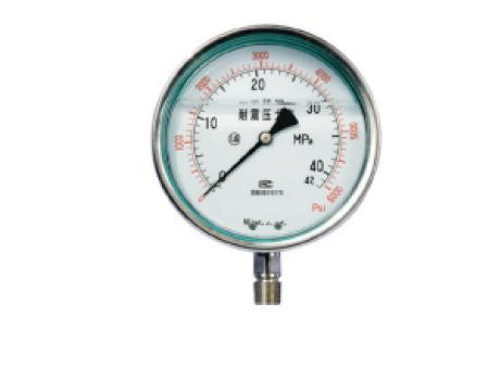 耐震型全不锈钢压力表