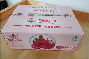 包装盒价格-呼市火龙果包装盒哪家便宜