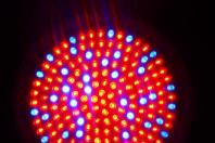 5730贴片,LED灯,5730灯珠