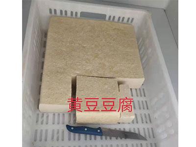 銷量好的凍豆腐報價-許昌凍豆腐
