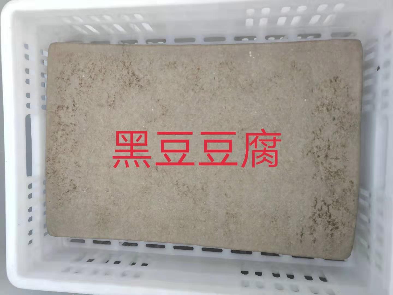 河南哪里供应的冻豆腐好-河南冻豆腐厂家