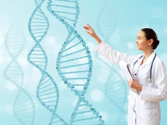 免疫细胞疗法项目