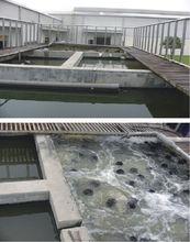 生活污水處理價格-遼寧經驗豐富的生活污水處理公司