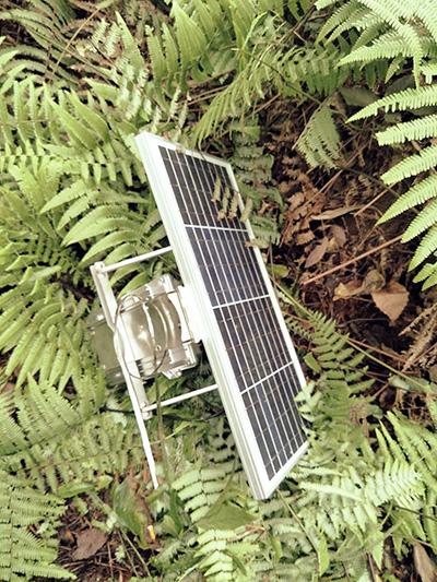 珠海哪里有供應高質量的電力故障指示器無線通訊終端-實時監測裝置供應廠家