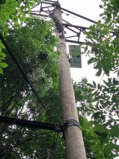 珠海价格适中的电力故障指示器无线通讯终端厂家推荐 怎么挑选实时监测装置
