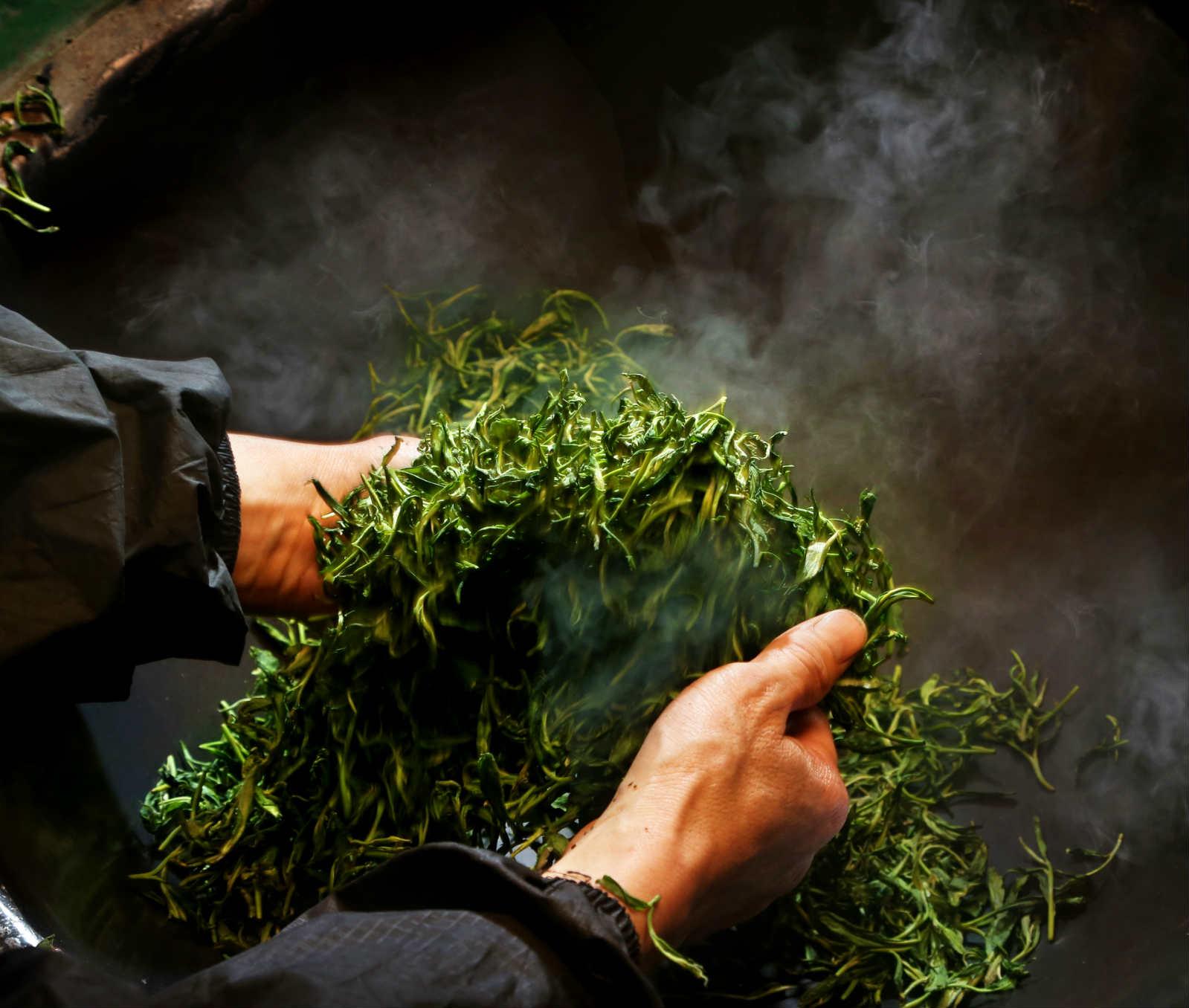 峨眉山有机茶叶