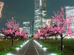 led景观树灯,景观树灯,景观树灯厂家