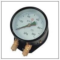 上海上仪双针双管压力表价格合理|YZS-102双针双管压力表