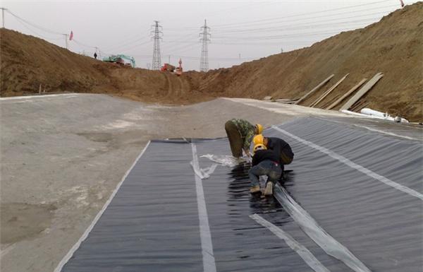 青海防水板/厂家直销-中水北方