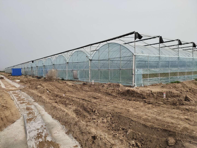 河北8432連棟薄膜智能溫室整體材料——新野溫室廠家供應