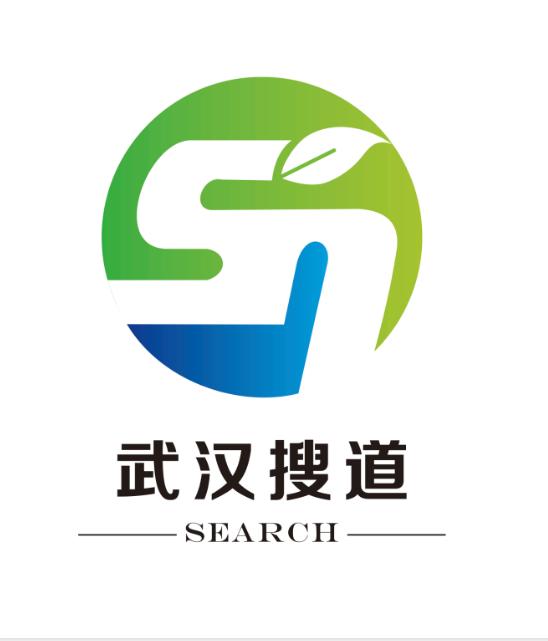 武漢搜道網絡科技有限公司