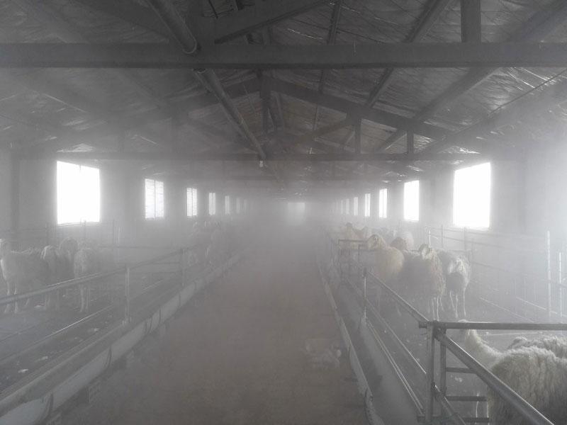 養殖場消毒除臭設備廠家直銷_河南可靠的養殖場消毒除臭設備供應商是哪家