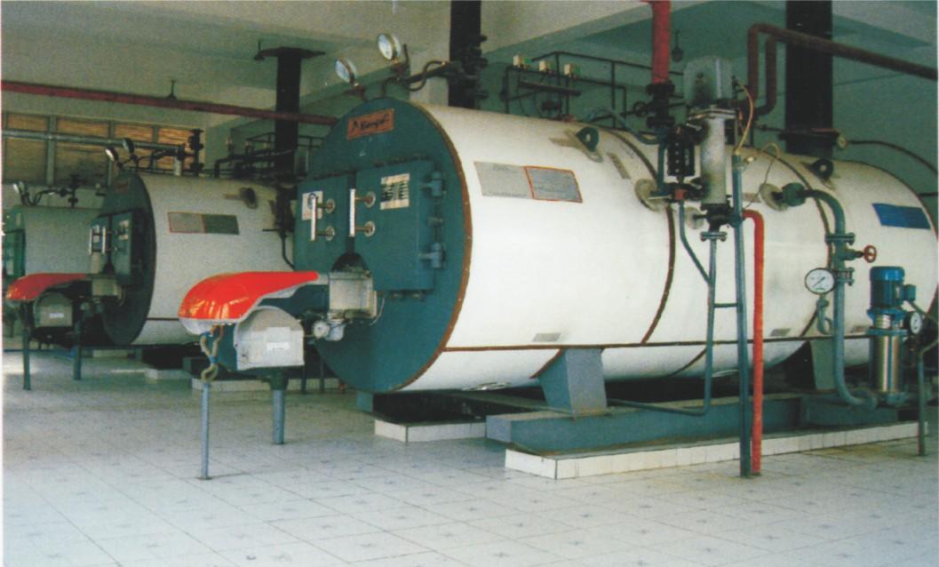 2吨低氮蒸汽发生器|成都耐用的锅炉批售