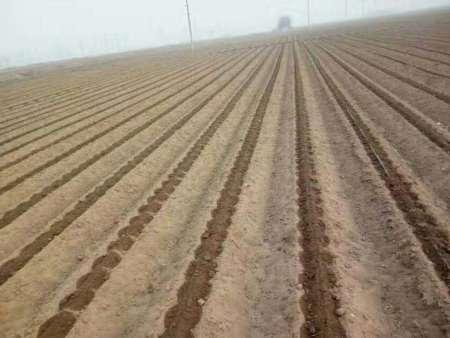 來中宇達農業設施,買口碑好的滴灌帶-浙江滴灌帶