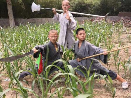 山东潍坊武校和宁夏武校的创新管理方法?如何进行武术教学?