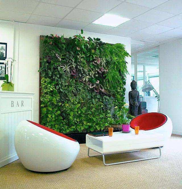 植物墻|廣州優良的垂直立體綠化生態設計服務報價