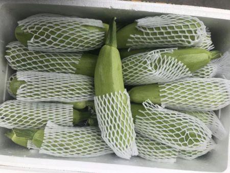 江苏专业蔬菜配送-专业的农副产品配送服务上哪找