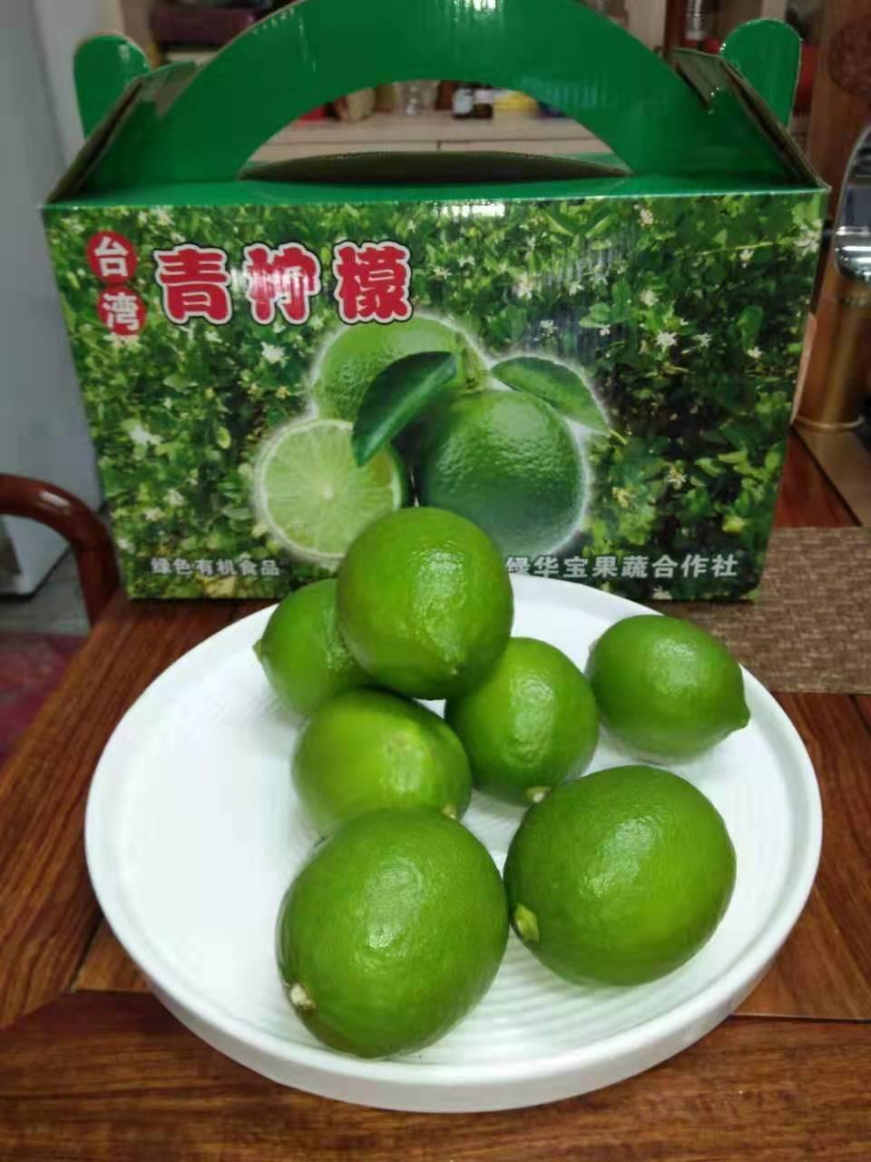 廈門哪里臺灣四季香水檸檬價格便宜