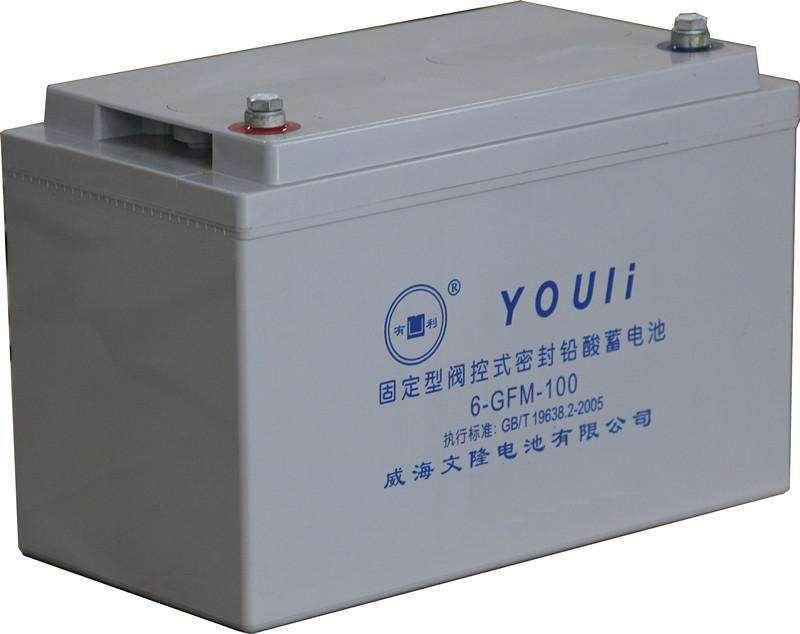 威海文隆6-GFM-100  有利蓄电池   铅酸蓄电池