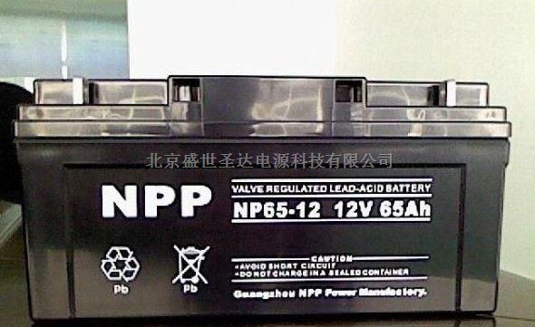 广州耐普蓄电池