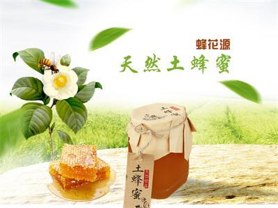 土蜂蜜出售-蜂花源合作社供应实惠的土蜂蜜