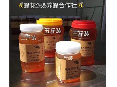 南阳哪有卖蜂蜜的|口碑好的蜂蜜推荐