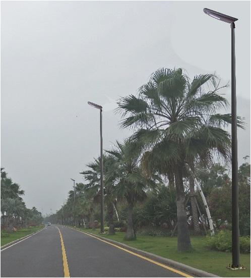 廈門久賢賢明60W路燈JXL-XM60C
