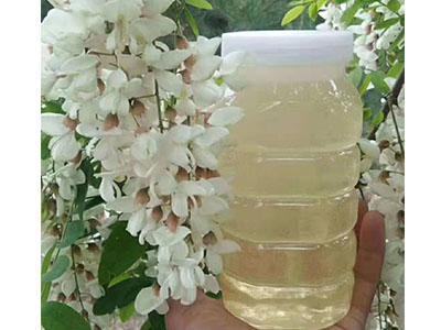 槐花蜜價格|優良的槐花蜜,蜂花源合作社供應
