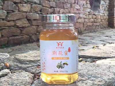 蜂蜜加盟|南阳具有口碑的荆条蜜供应商【武行金蜂】