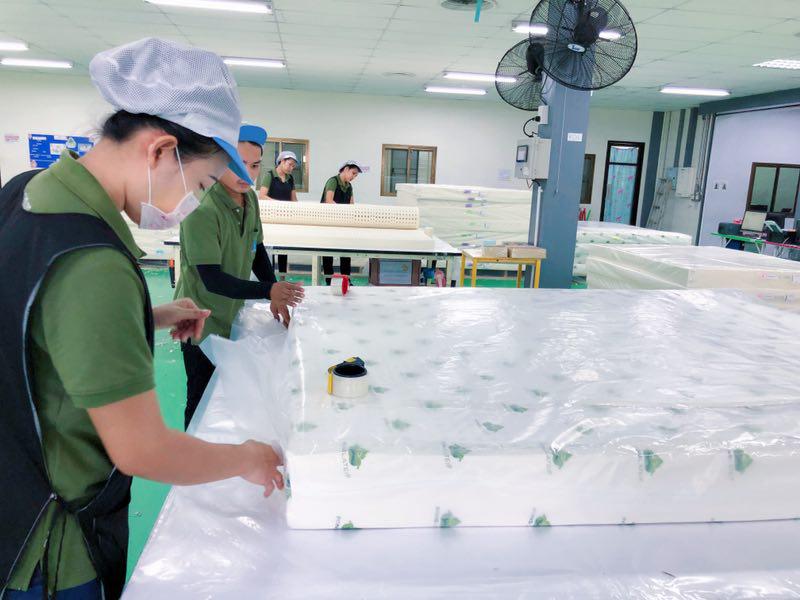 泰國進口乳膠枕泰國進口乳膠枕代理泰國進口乳膠枕哪家好