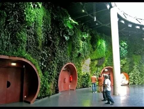 佛山生態植物墻公司推薦_靠譜的垂直立體綠化生態設計公司_植物墻
