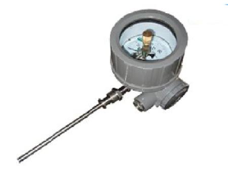 热电阻双金属温度计-怎么选择质量有保障的双金属温度计