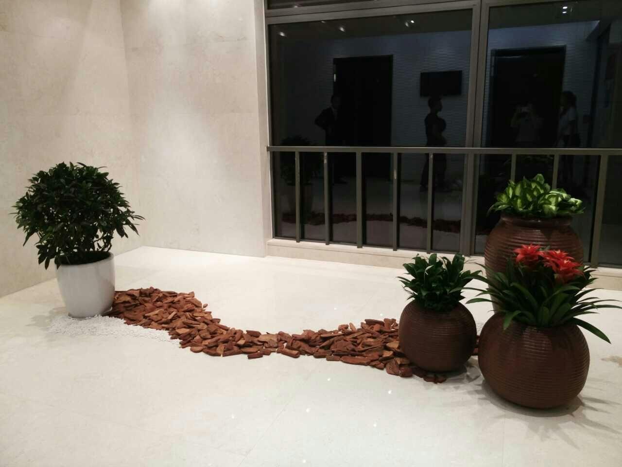 哈爾濱花卉工程 哈爾濱書雅園藝_聲譽好的哈爾濱花卉租賃公司