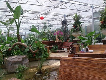 花卉温室大棚,花卉温室大棚承接,花卉温室大棚建设